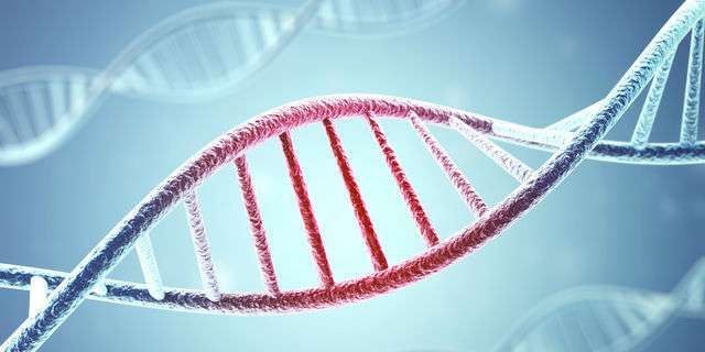 遺伝子異常