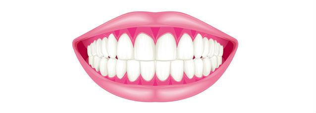 健康なピンク色の歯茎