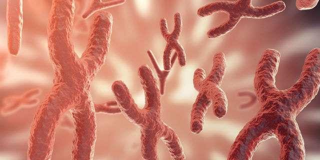染色体異常