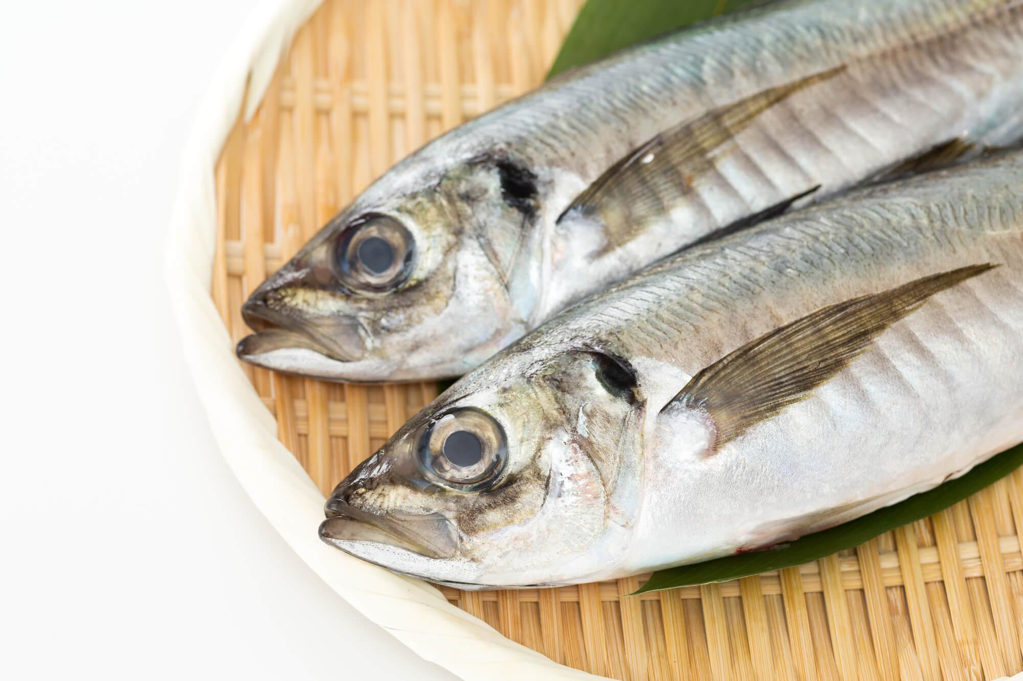 胆汁酸を含む魚介類