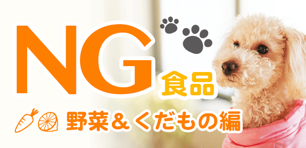 犬にNG食べ物リスト!~野菜・果物編~